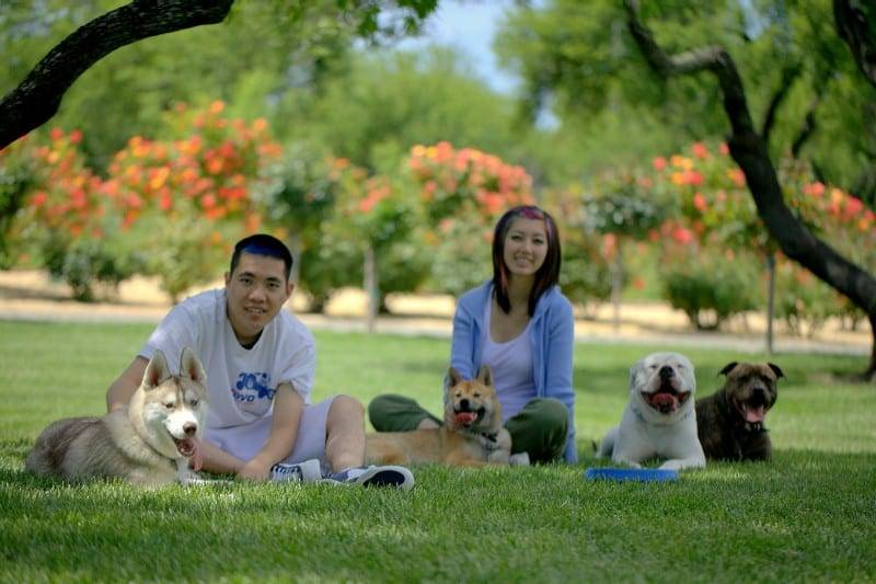 Dog trainers in Sacramento