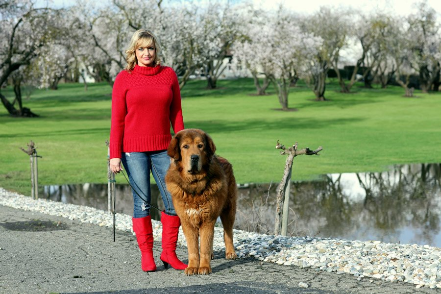 Dog Trainers San Ramon
